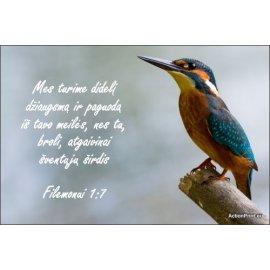 Magnetukas Biblijos eilutė - Filemonui 1:7