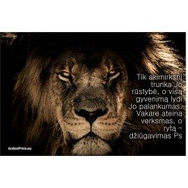 Magnetukas Biblijos eilutė - Psalmė 30:5