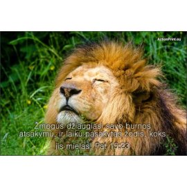 Magnetukas Biblijos eilutė - Patarlių 15:23