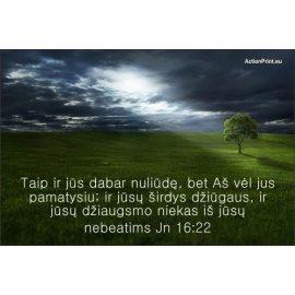 Magnetukas Biblijos eilutė - Jono 16:22