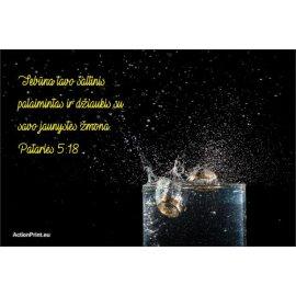 Magnetukas Biblijos eilutė - Patarlių 5:18
