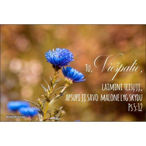 Magnetukas Biblijos eilutė - Psalmė 5:12