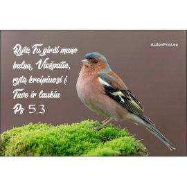 Magnetukas Biblijos eilutė - Psalmė 5,3
