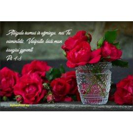 Magnetukas Biblijos eilutė - Psalmė 4:8
