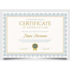 Sertifikatas-diplomas, 20 vnt, Nr. 000004