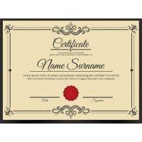 Sertifikatas-diplomas, 20 vnt, Nr. 000011