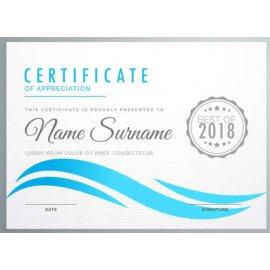 Sertifikatas-diplomas, 20 vnt, Nr. 000013