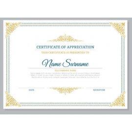 Sertifikatas-diplomas, 20 vnt, Nr. 000025