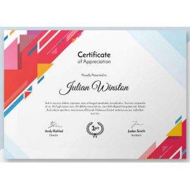 Sertifikatas-diplomas, 20 vnt, Nr. 000031