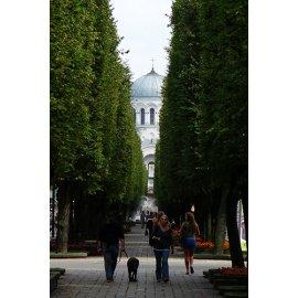 Drobė vertikali Laisvės al., Kaunas, Lietuva