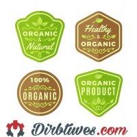 16 vnt, Etiketės-lipdukai Organic, Natural, Healthy, Naturalus, Sveikas