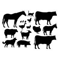 Plakatas mokomasis Gyvūnai 0005