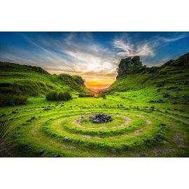 Fototapetas Ypatinga žalia vieta