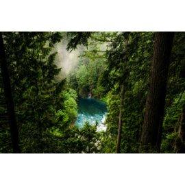 Fototapetas Ežeras tarp kalnų šalia miško - 002