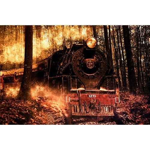 Fototapetas Senovinė traukinio nuotrauka