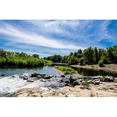Fototapetas Miško upė
