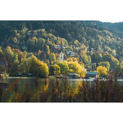 Fototapetai Miestas paslėptas medžiais