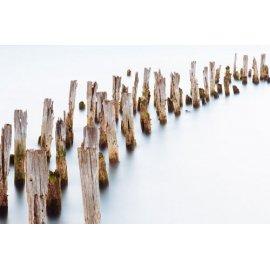 Fototapetai Mediniai paplūdimio stulpai