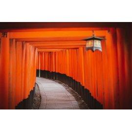 Fototapetai Šintoizmo šventovės vartai Kiote, Japonija