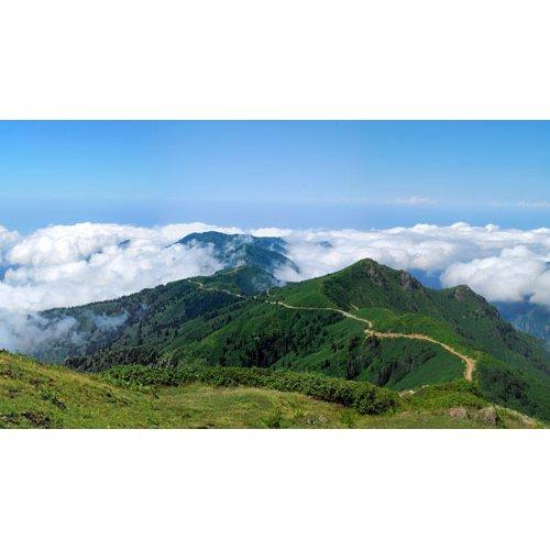 Fototapetai Kalnų takas virš debesų