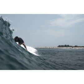 Fototapetai Banglentininkas ant bangos 2