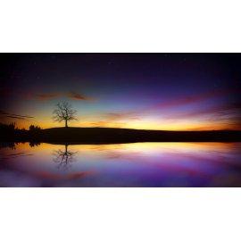 Fototapetai Besileidžiančios saulės spalvos