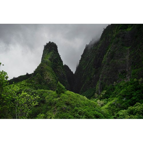 Fototapetai Kalnas apdengtas įvairiais augalais, Iao Valley State, Parkas, Havajai