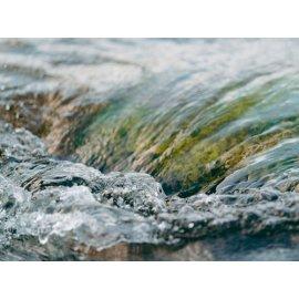 Fototapetai Vanduo plaukiantis per akmenį