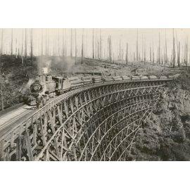 Fototapetai Miško ruošos darbai su traukiniu