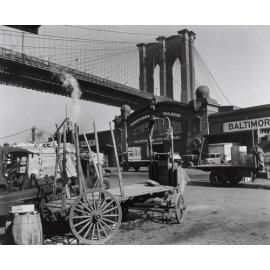 Fototapetai Niujorko viešoji biblioteka po tiltu